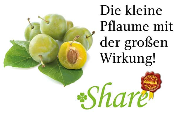 Share Frucht Pflaume Nährstoff Vital