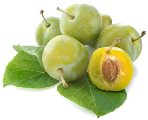 Share Pflaume Frucht